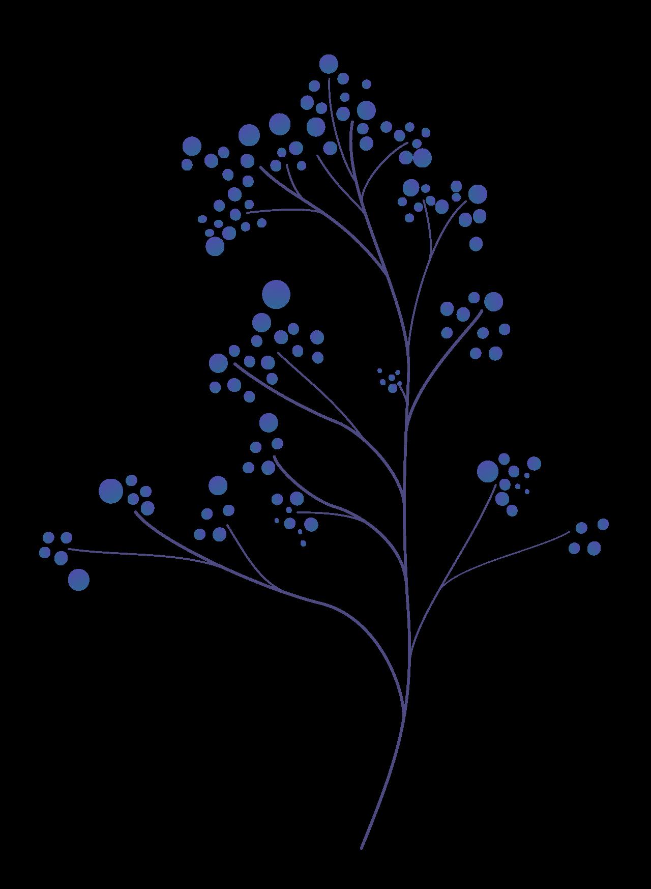 Plants07