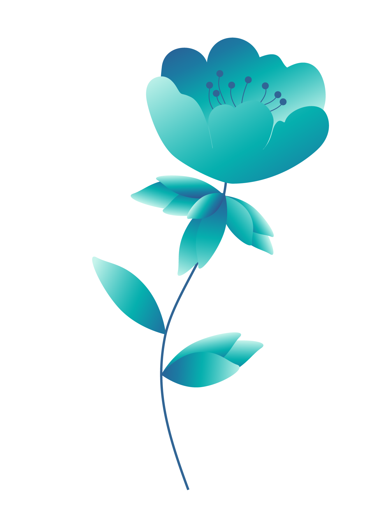 Plants12-1